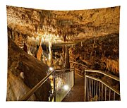 Onondaga Cave Formations Tapestry