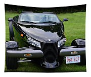 1999 Plymouth Prowler Tapestry