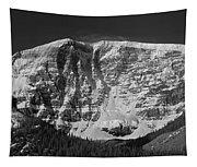 1m3769 Bw East Face Mt Kitchner Tapestry