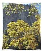 1m6610 Middle Cathedral Rock In Autumn Tapestry