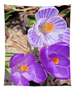 1st Flower In Garden 2010 Photo Tapestry