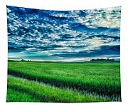 An Iowa Sunset Tapestry
