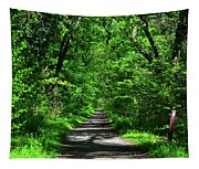 Appalachian Trail In Maryland Tapestry
