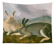Arctic Hare Tapestry
