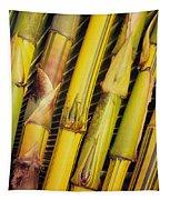 Bamboo Stalks Tapestry