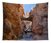 Navajo Trail Natural Bridge Tapestry