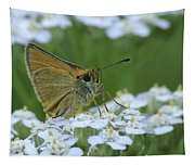 Dion Skipper Yarrow Blossoms Tapestry