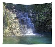 Dripping Springs Falls Tapestry