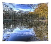 Early Morning Forest Pond Tapestry