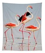 Greater Flamingos Phoenicopterus Roseus Tapestry