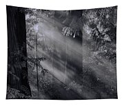 Let There Be Light Tapestry
