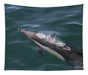 Long-beaked Common Dolphins In Monterey Bay 2015 Tapestry