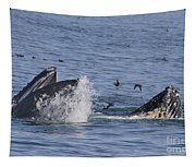 Lunge-feeding Humpback Whales Tapestry