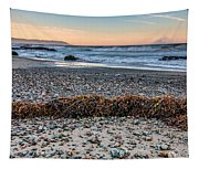 Cayucos State Beach Flotsam Pano Tapestry