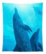 Pair Of Spotted Dolphins Tapestry