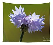 Pale Blue Bachelor Button From The Double Ball Mix Tapestry