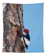 Red Headed Woodpecker Tapestry