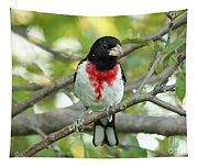 Rose-breasted Grosbeak Tapestry