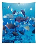 Saipan Marine Life Tapestry