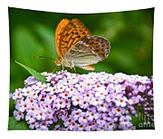 Tramonti Butterfly Tapestry