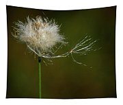 Tussock Cottongrass Tapestry