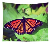 Viceroy Butterfly   Tapestry