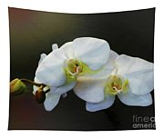 White Orchid - Doritaenopsis Orchid Tapestry