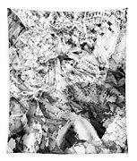 2012 8 26 Tapestry