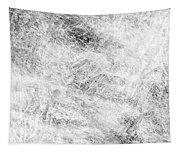 2013 8 22  Tapestry
