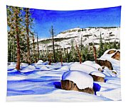 #202 Donner Summit Tapestry