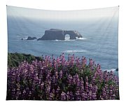 2a6101 Arched Rock And Blue Pod Lupine Ca Tapestry