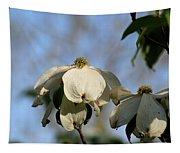 Flowering Dogwood Tapestry