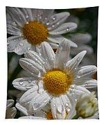 Marguerite Daisy Tapestry