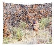 Mule Deer Doe Tapestry