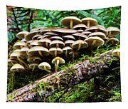 Mushrooms Tapestry