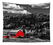 Red Barn In Wyoming Tapestry