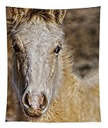 Red Willow Pony Tapestry