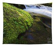 Sweet Creek Oregon 12 Tapestry