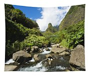 View Of Iao Needle Tapestry