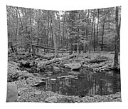 Great Smoky Mountains National Park Tapestry