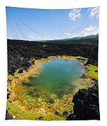 Ahihi Kinau Natural Reserve Tapestry