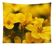 Bidens Named Peter's Gold Carpet Tapestry