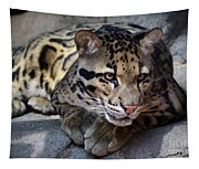 Clouded Leopard Tapestry