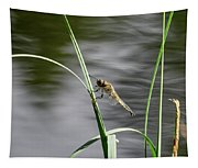 Four-spotted Chaser Tapestry