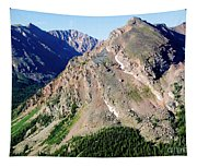 Hiking The Mount Massive Summit Tapestry