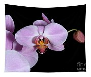 Pink Orchid IIi Tapestry