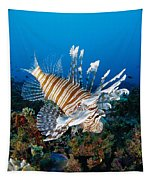 Underwater Close-up Tapestry