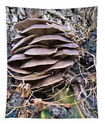 Mushroom Art Tapestry