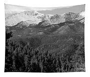 Fresh Snow On Pikes Peak Tapestry