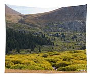 Mount Bierstadt In The Arapahoe National Forest Tapestry